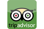 Shark Cage Diving Trip Adviser